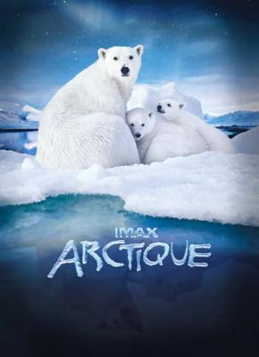affiche film imax arctique