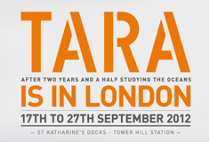 Tara Londres