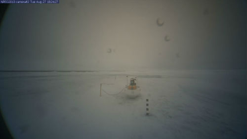 webcam north pole 2